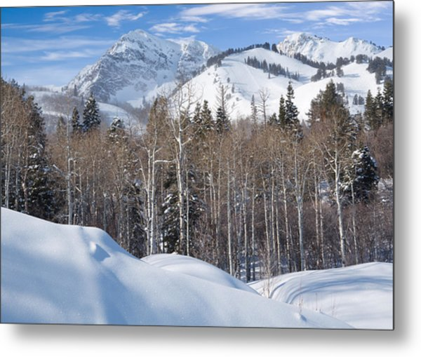 Winter In The Wasatch Mountains Of Northern Utah Metal Print