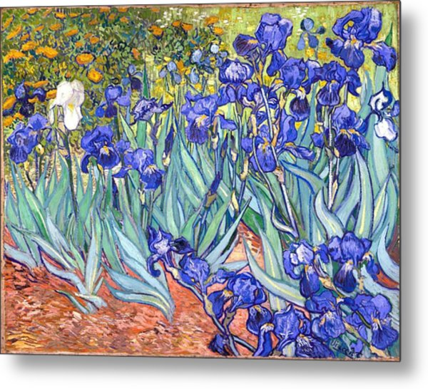 Metal Print featuring the painting Irises by Vincent Van Gogh
