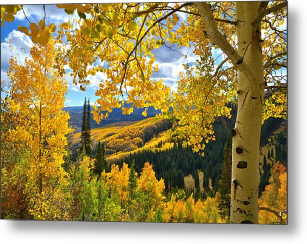 Ohio Pass Fall Colors Metal Print