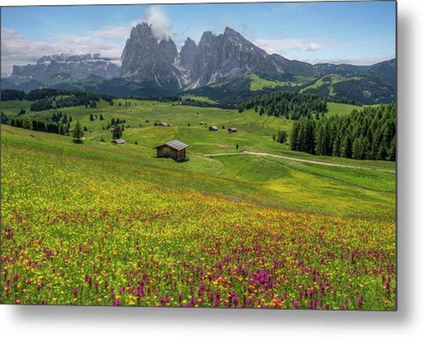 Alpe Di Siusi - Dolomiti Metal Print
