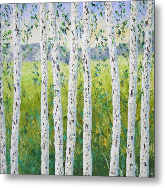 Aspen Trees Colorado Metal Print by Frederic Payet