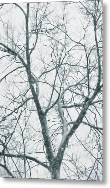 Blizzard Metal Print by JAMART Photography