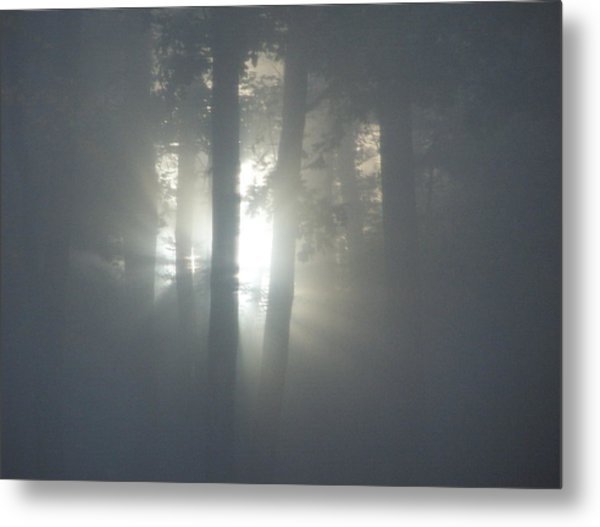 Daybreak Of Creation Metal Print by Lila Mattison