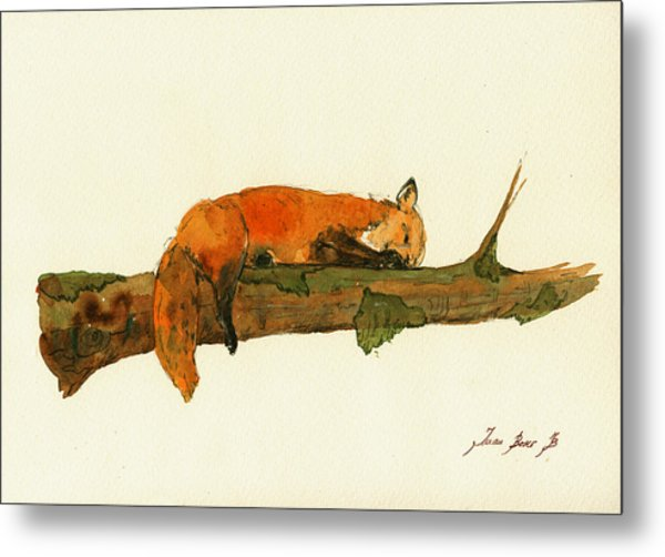 Fox Sleeping Painting Metal Print