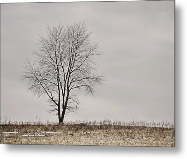 February Horizon   Metal Print by JAMART Photography