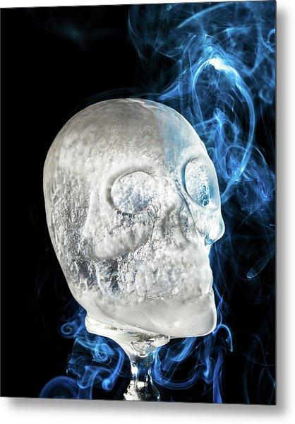 Ice Skullpture Metal Print