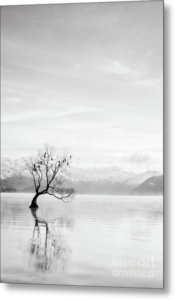 Lake Wanaka, Otago, New Zealand Metal Print