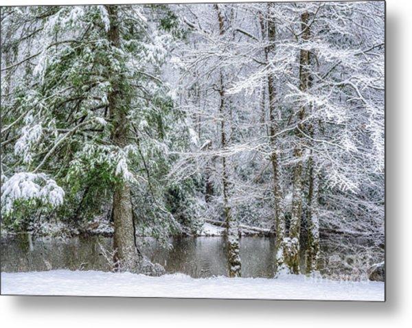 March Snow Along Cranberry River Metal Print