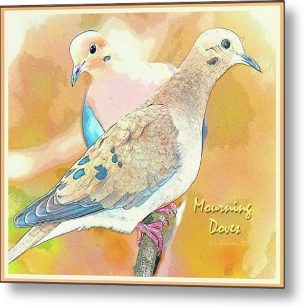 Mourning Dove Pair  Metal Print