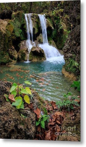 Price Falls In Autumn Color.  Metal Print