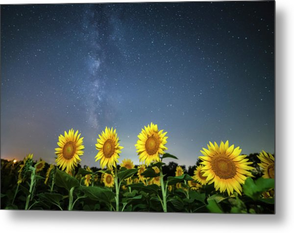 Sunflower Galaxy Iv Metal Print