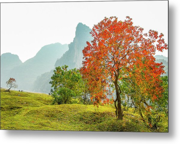 The Colorful Autumn Scenery Metal Print