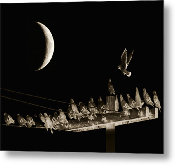 The Gathering Metal Print