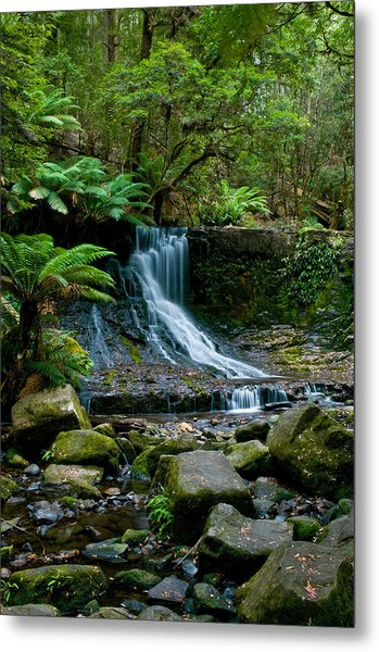 Waterfall In Deep Forest Metal Print