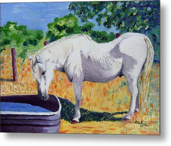 34 Year Old Elfid Metal Print by Lisa Rose Musselwhite