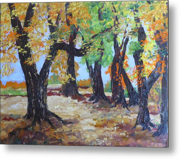 #35 Cottonwood Colors Metal Print