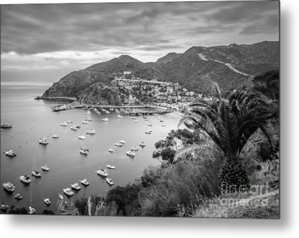 Catalina Island Avalon Bay Black And White Picture Metal Print