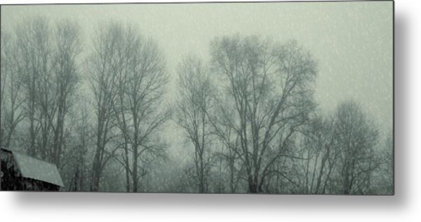 Dead Of Winter Metal Print by JAMART Photography