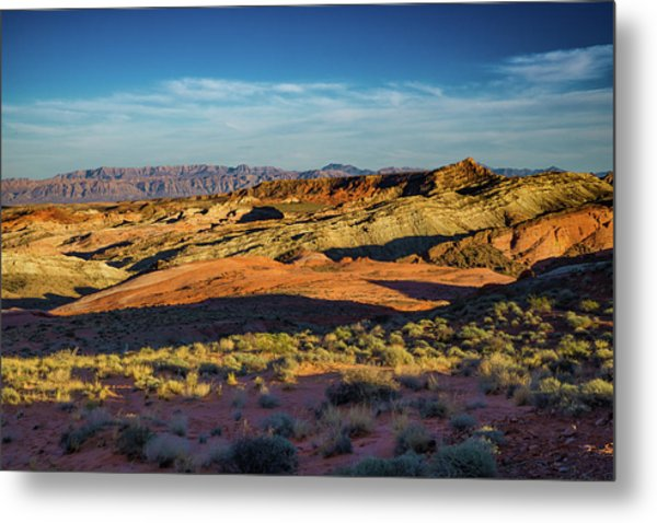 I Could Hear For Miles. Metal Print