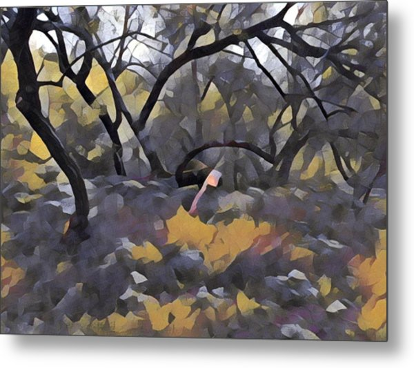Morning Walk Trees Metal Print