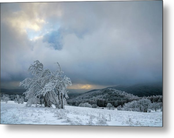 Typical Snowy Landscape In Ore Mountains, Czech Republic. Metal Print