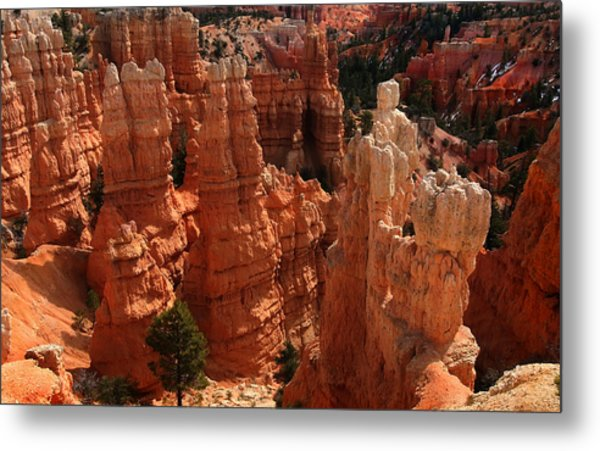 Bryce Canyon National Park Metal Print