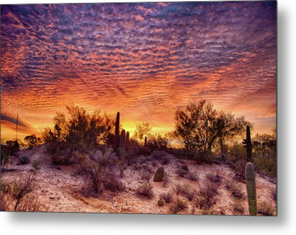 Arizona Sunrise Metal Print