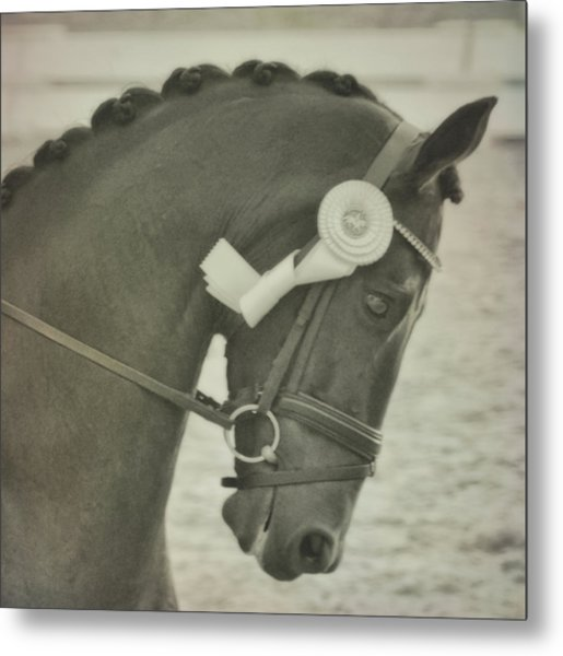 Victory Gallop Metal Print by JAMART Photography