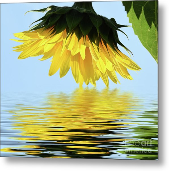 Nice Sunflower Metal Print