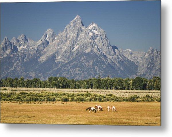 #5687 - Wyoming Metal Print