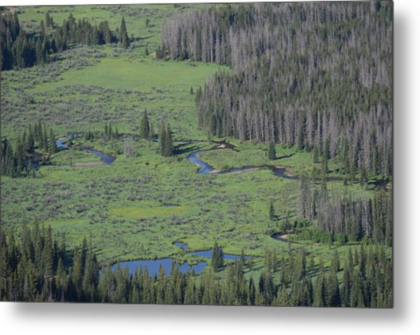 Scenery Rocky Mountain Np Co Metal Print
