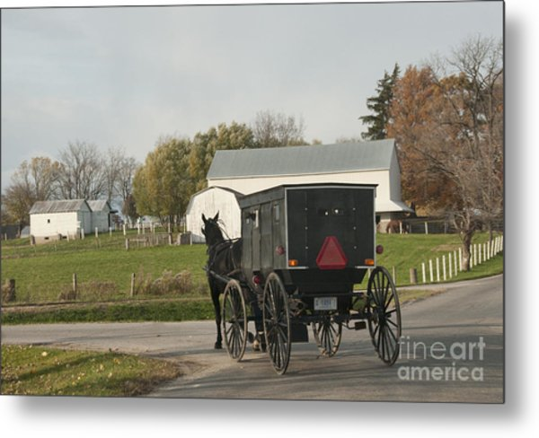 Amish Buggy Metal Print
