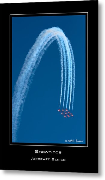 Canadian Snowbirds Metal Print by Mathias Rousseau
