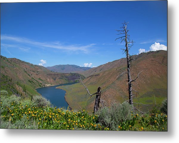 Metal Print featuring the photograph Idaho Landscape by Dart Humeston