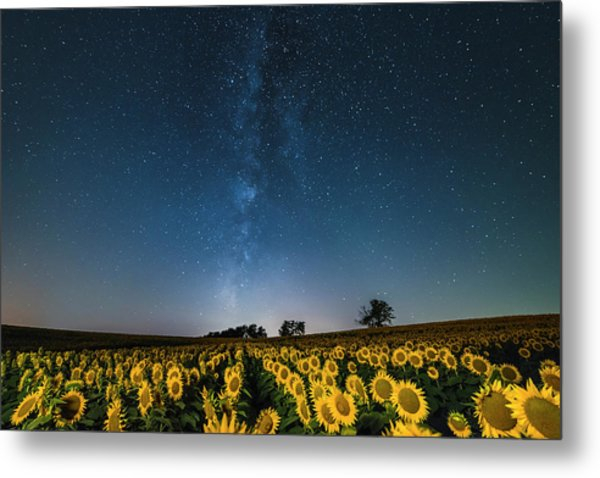 Sunflower Galaxy Metal Print