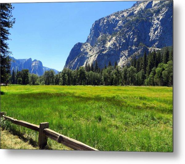 Yosemite Meadow Photograph Metal Print