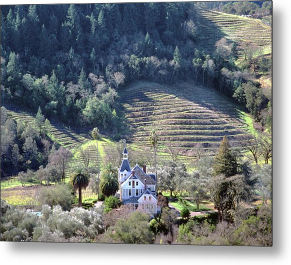 6b6312 Falcon Crest Winery Grounds Metal Print