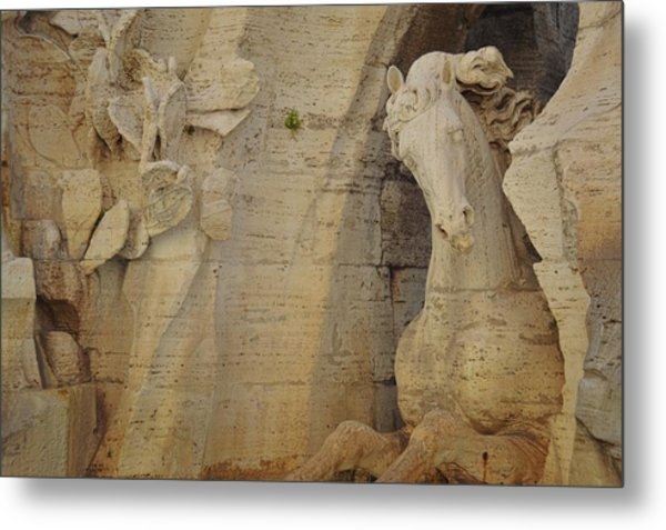 Horse In The Piazza Fountain  Metal Print by JAMART Photography
