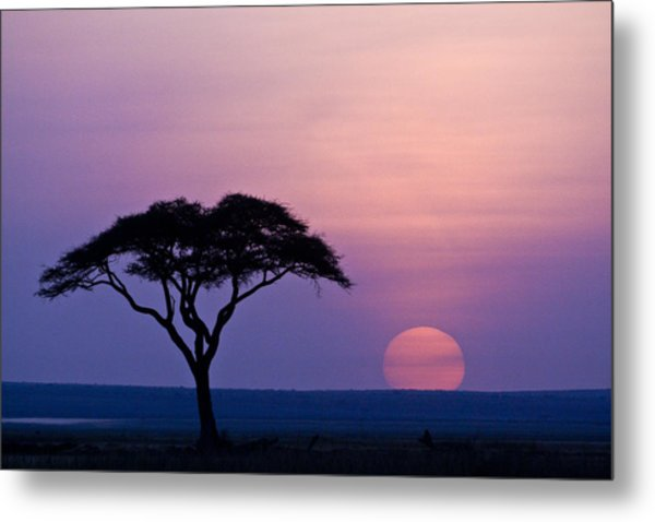 African Sunrise Metal Print