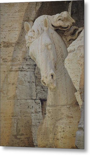 Horse In The Fountain  Metal Print by JAMART Photography