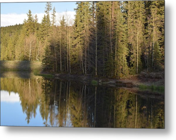 Shadow Reflection Kiddie Pond Divide Co Metal Print