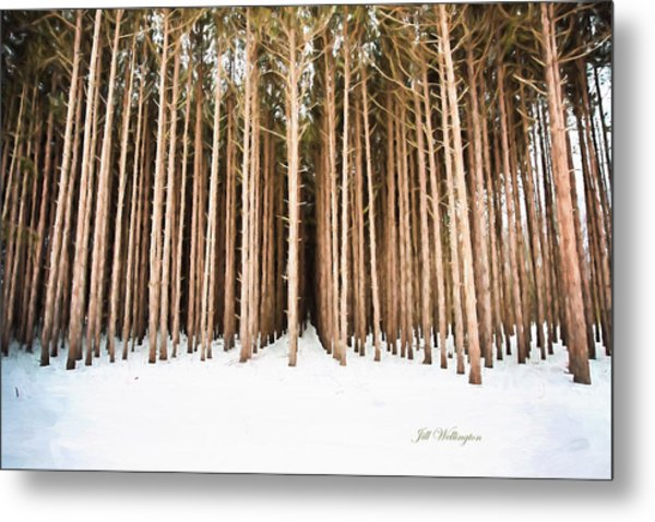 Michigan Winter Metal Print