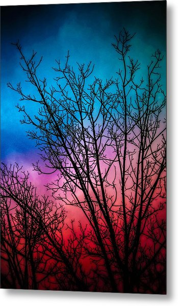 A Beautiful Morning Metal Print