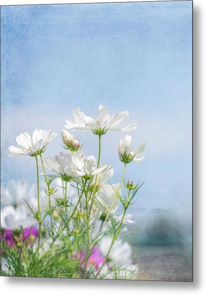 A Beautiful Summer Day Metal Print