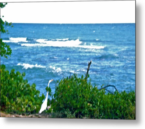 A Bird And The Sea Metal Print