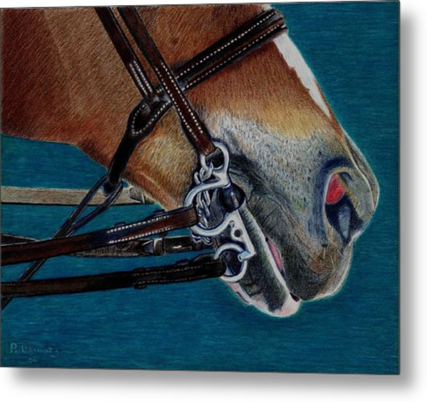 A Bit Of Control - Horse Bridle Painting Metal Print