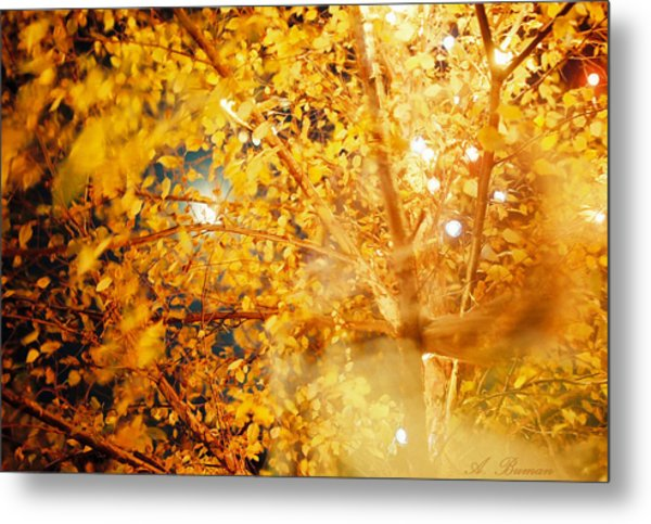 Metal Print featuring the photograph A Breath Of C'hi by Angelique Bowman