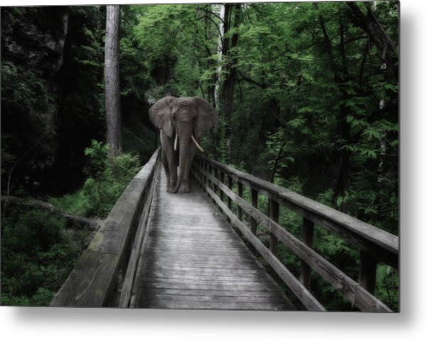 A Bull On The Boardwalk Metal Print