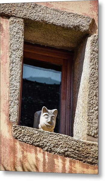 A Cat On Hot Bricks Metal Print