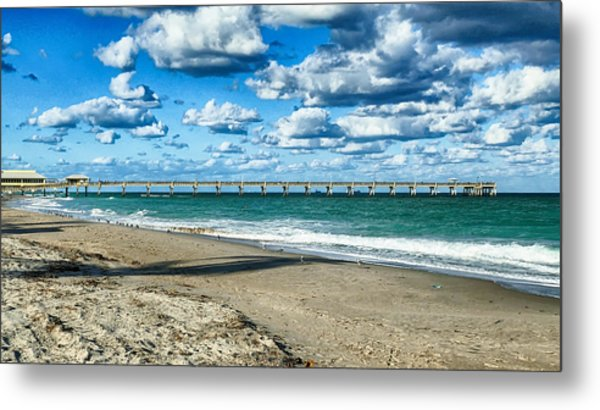 A Cold Day In Florida 62f Metal Print by Dieter Lesche